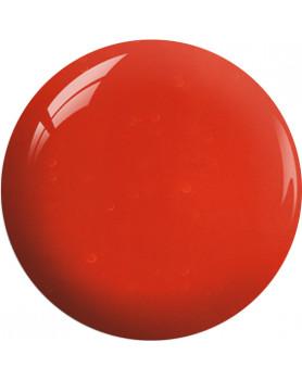 SC19 – Cream Of Tomato