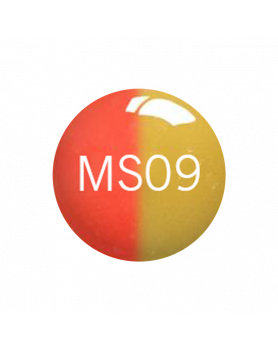 ms 09color