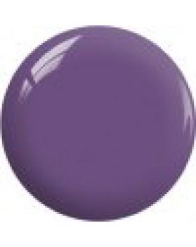 BP17 - Crowned Purple